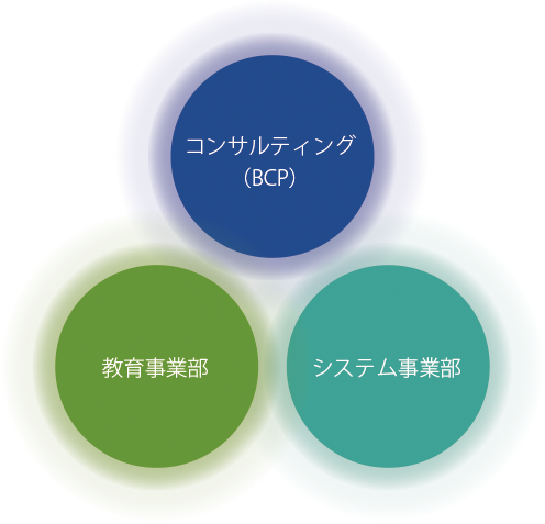 実務薬学総合研究所 3つの柱